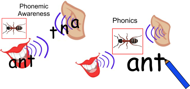 Phonic & Phonemeic 1
